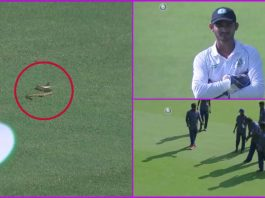 Snake Delays Start of the Game Between Vidarbha and Andhra