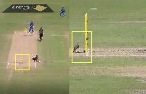 India vs Australia Women Stump Mic Saves Meg Lanning From Getting Out