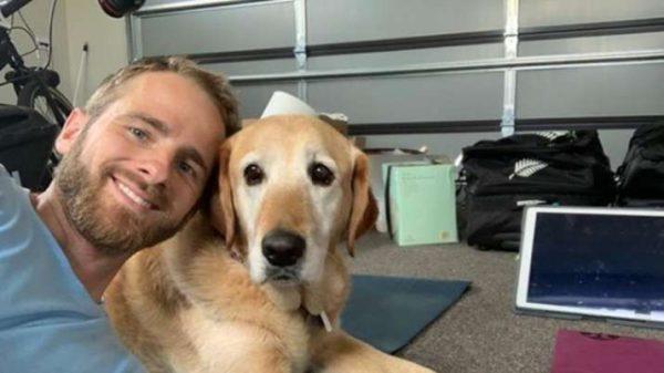 Kane Williamson's Dog Takes Stunning Catch At Slip